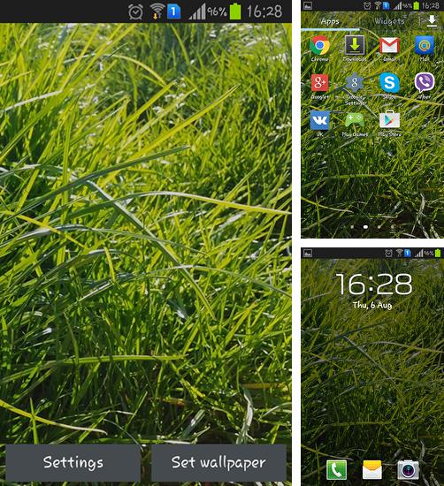 In addition to live wallpaper Ghost touch for Android phones and tablets, you can also download Real grass for free.