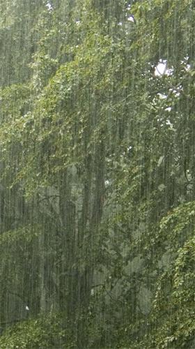 Скачать обои-Капли дождя на голубом стекле с дождем скачать ... | 500x280
