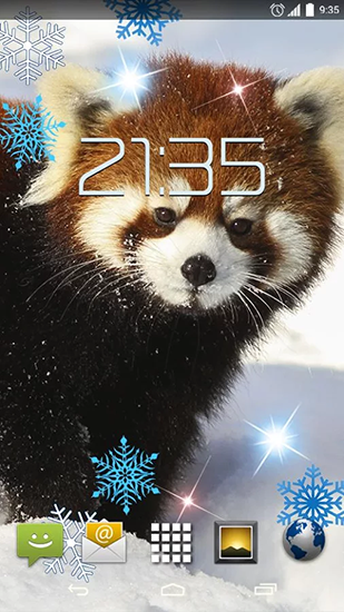Kostenloses Android-Live Wallpaper Roter Panda. Vollversion der Android-apk-App Red panda für Tablets und Telefone.
