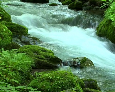 Download livewallpaper River flow for Android. Get full version of Android apk livewallpaper River flow for tablet and phone.
