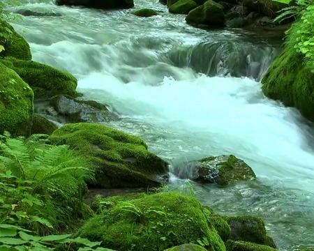 Download River flow - livewallpaper for Android. River flow apk - free download.