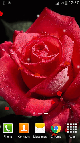 Rose 3D by Dream World HD Live Wallpapers