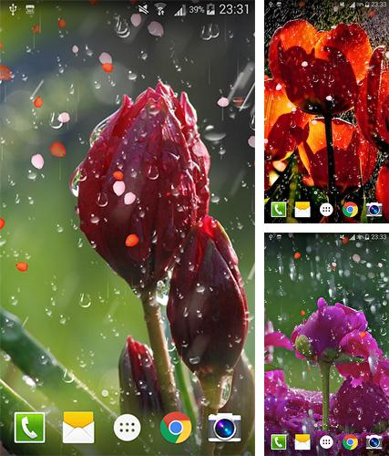 Raindrops Live Wallpaper: The Moon Für Android Kostenlos Herunterladen. Live