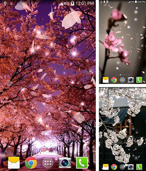 In addition to live wallpaper Electric matrix for Android phones and tablets, you can also download Sakura 3D for free.