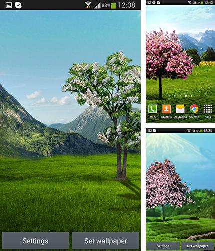 Kostenloses Android-Live Wallpaper Sakura. Vollversion der Android-apk-App Sakura by DIVARC GROUP für Tablets und Telefone.