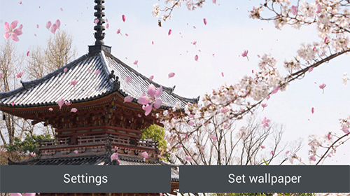 Download livewallpaper Sakura garden for Android. Get full version of Android apk livewallpaper Sakura garden for tablet and phone.