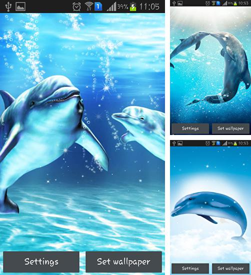 In addition to live wallpaper Night city by Amax LWPS for Android phones and tablets, you can also download Sea dolphin for free.