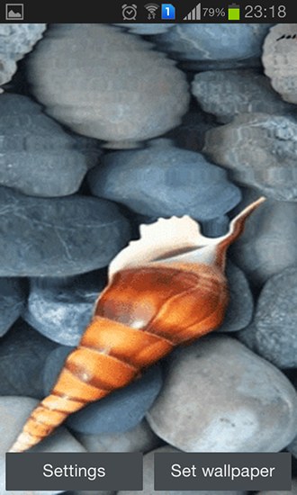 Download livewallpaper Seashell by Memory lane for Android. Get full version of Android apk livewallpaper Seashell by Memory lane for tablet and phone.