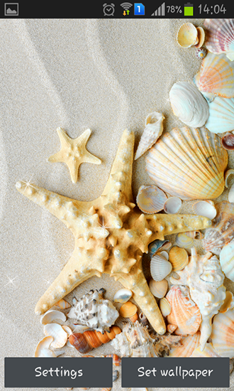 Download Seashells - livewallpaper for Android. Seashells apk - free download.