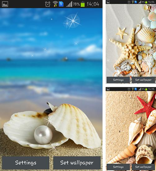 In addition to live wallpaper Marine miracle for Android phones and tablets, you can also download Seashells for free.
