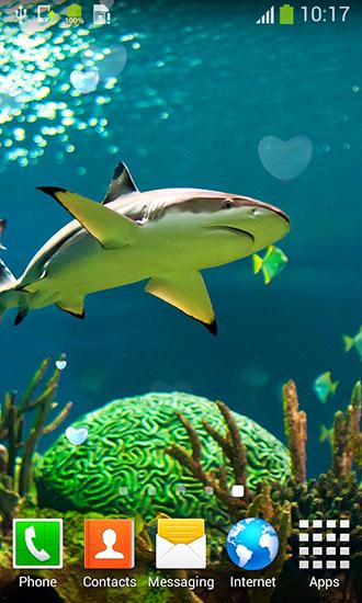 Live Wallpaper Description Shark