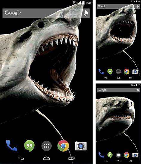 In addition to live wallpaper Diamond hearts for Android phones and tablets, you can also download Shark 3D for free.