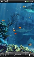 Shark reef - download free live wallpapers for Android. Shark reef full Android apk version for tablets and phones.