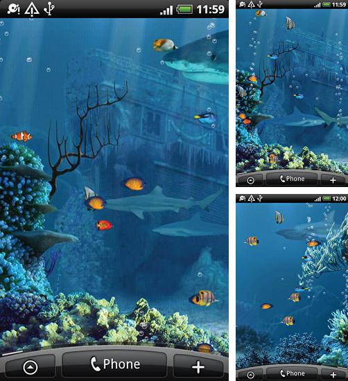 In addition to live wallpaper Rose 3D by Dream World HD Live Wallpapers for Android phones and tablets, you can also download Shark reef for free.
