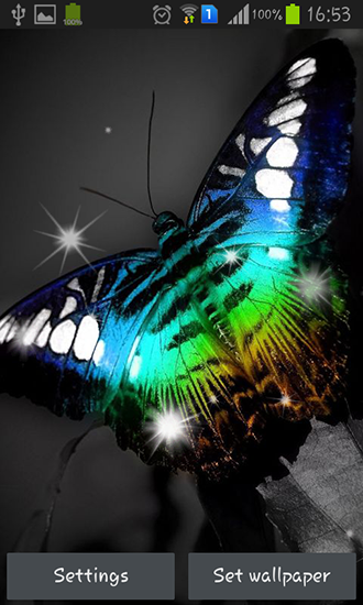 Download livewallpaper Shiny butterfly for Android. Get full version of Android apk livewallpaper Shiny butterfly for tablet and phone.