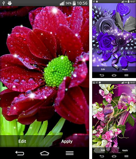 In addition to live wallpaper Nature for Android phones and tablets, you can also download Shiny flowers for free.