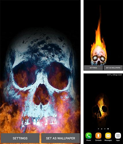 Download live wallpaper Skull for Android. Get full version of Android apk livewallpaper Skull for tablet and phone.