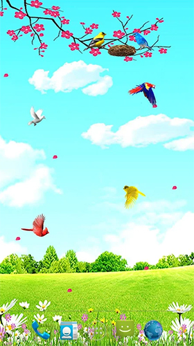 Download Sky birds - livewallpaper for Android. Sky birds apk - free download.