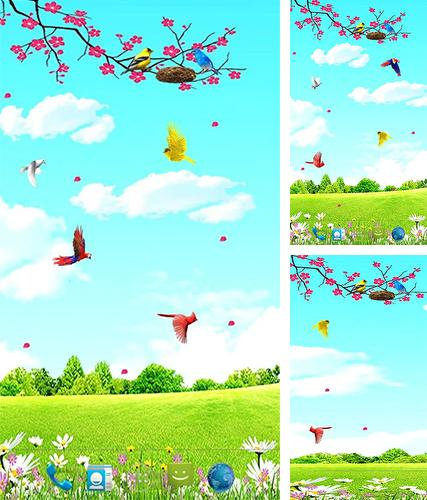 Download live wallpaper Sky birds for Android. Get full version of Android apk livewallpaper Sky birds for tablet and phone.