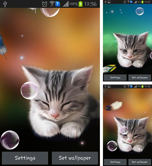 In addition to live wallpaper Windmill 3D for Android phones and tablets, you can also download Sleepy kitten for free.