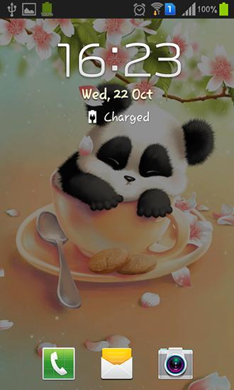 descargar sleepy panda para android gratis el fondo de pantalla