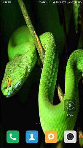 Download livewallpaper Snake HD for Android. Get full version of Android apk livewallpaper Snake HD for tablet and phone.