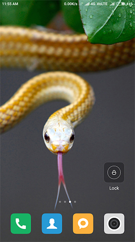 Screenshots of the Snake HD for Android tablet, phone.