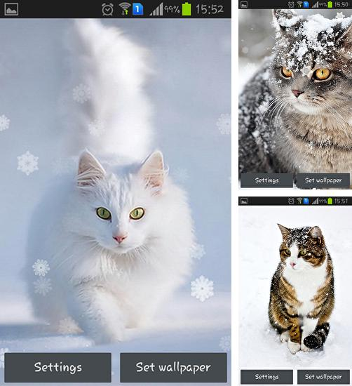 In addition to live wallpaper Funny monkey by Galaxy Launcher for Android phones and tablets, you can also download Snow cats for free.