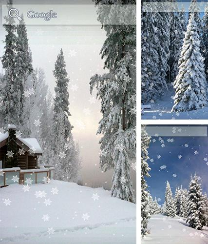 Download live wallpaper Snow winter for Android. Get full version of Android apk livewallpaper Snow winter for tablet and phone.