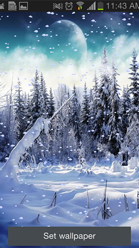 Snowfall by Tontoon Infotech