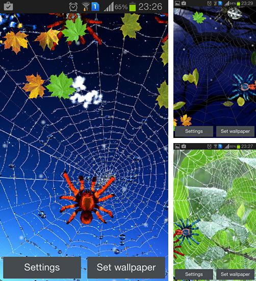 In addition to live wallpaper Transformers battle for Android phones and tablets, you can also download Spider for free.