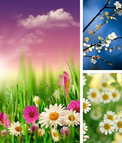 Spring by HQ Awesome Live Wallpaper