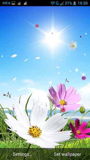 Download Spring by Pro live wallpapers - livewallpaper for Android. Spring by Pro live wallpapers apk - free download.