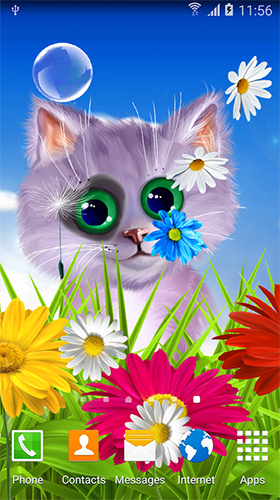 Download Spring cat - livewallpaper for Android. Spring cat apk - free download.