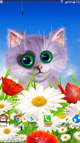 Screenshots of the Spring cat for Android tablet, phone.
