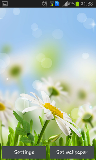 Download livewallpaper Spring flower for Android. Get full version of Android apk livewallpaper Spring flower for tablet and phone.