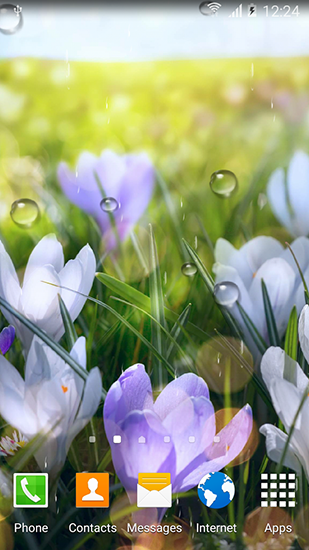 Screenshots of the Spring flowers for Android tablet, phone.