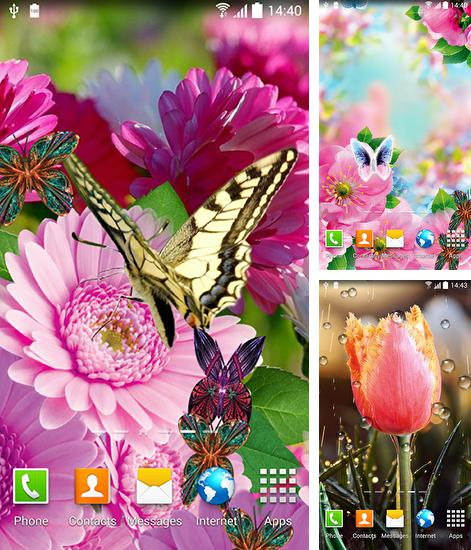 In addition to live wallpaper Wolf for Android phones and tablets, you can also download Spring flowers 3D for free.