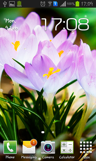 Download livewallpaper Spring flowers: Rain for Android. Get full version of Android apk livewallpaper Spring flowers: Rain for tablet and phone.