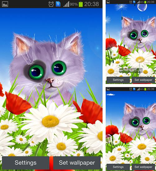 In addition to live wallpaper Bricks Pro for Android phones and tablets, you can also download Spring: Kitten for free.