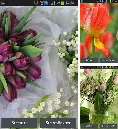 In addition to live wallpaper Pink by Niceforapps for Android phones and tablets, you can also download Springs lilie and tulips for free.