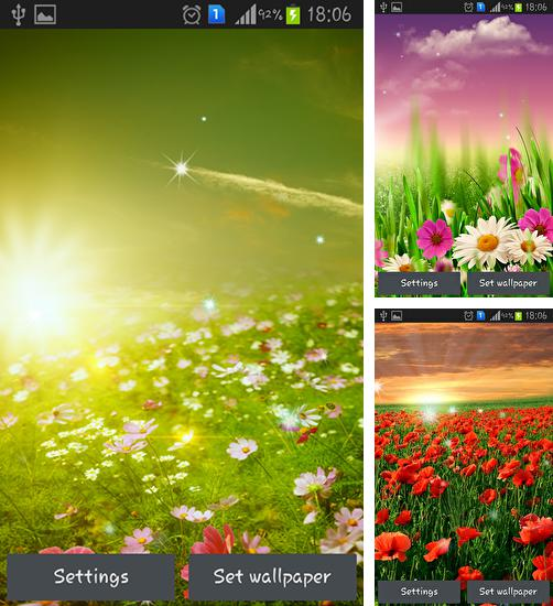 In addition to live wallpaper Penguin for Android phones and tablets, you can also download Spring meadow for free.