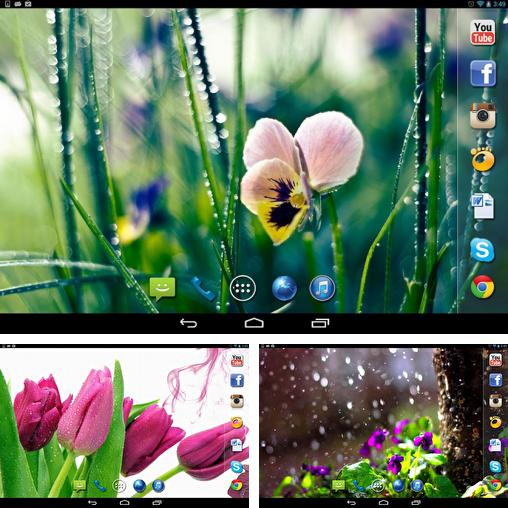 In addition to live wallpaper Electric matrix for Android phones and tablets, you can also download Spring rain for free.
