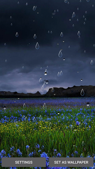 Download livewallpaper Spring rain by Locos apps for Android. Get full version of Android apk livewallpaper Spring rain by Locos apps for tablet and phone.