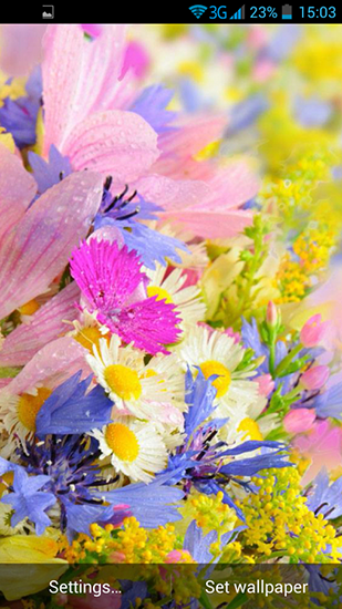 Screenshots von Summer Flowers by Dynamic Live Wallpapers für Android-Tablet, Smartphone.