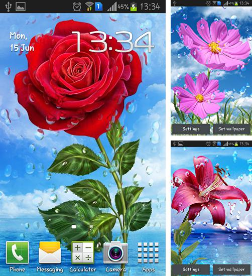 In addition to live wallpaper Cute by Live Wallpapers Gallery for Android phones and tablets, you can also download Summer rain: Flowers for free.