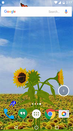 Download livewallpaper Sunflower 3D for Android. Get full version of Android apk livewallpaper Sunflower 3D for tablet and phone.