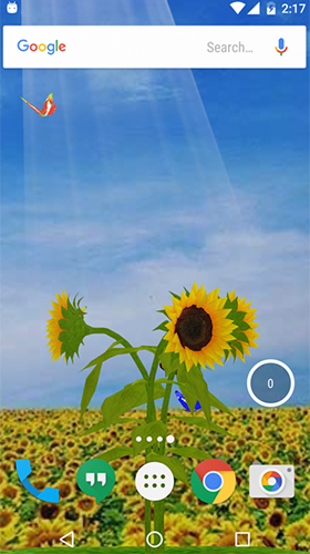 Download Sunflower 3D - livewallpaper for Android. Sunflower 3D apk - free download.