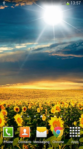Download Sunflowers - livewallpaper for Android. Sunflowers apk - free download.