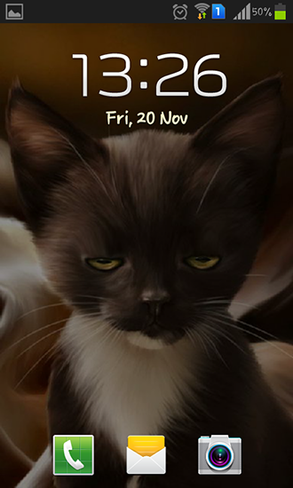 Download Surprised kitty - livewallpaper for Android. Surprised kitty apk - free download.